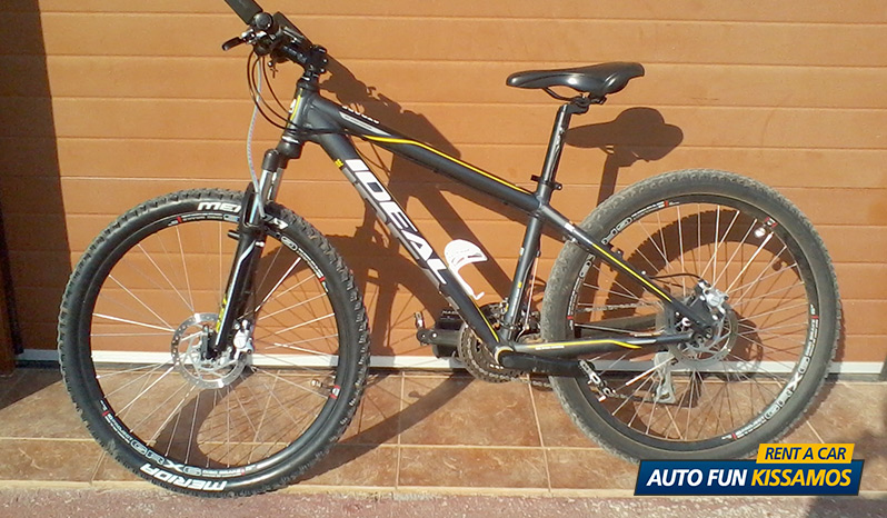 rent bycicle - IDEAL MOUNTAIN BIKE